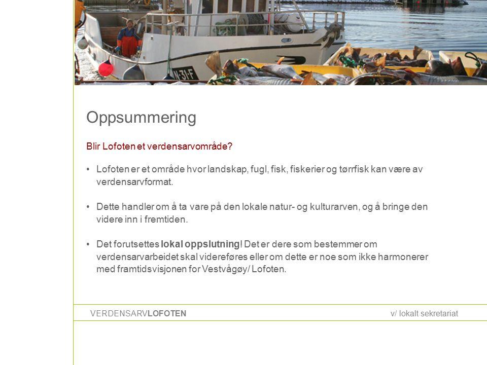 Oppsummering VERDENSARVLOFOTENv/ lokalt sekretariat Blir Lofoten et verdensarvområde.