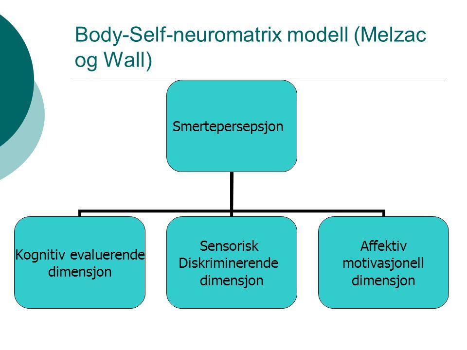 Kronisk smerte; cerebrale mekanismer – Sentrale smertemekanismer  fMRI: Viser ved induksjon av smerte og kronisk smerte endringer i metabolisme i visse områder i hjernen.