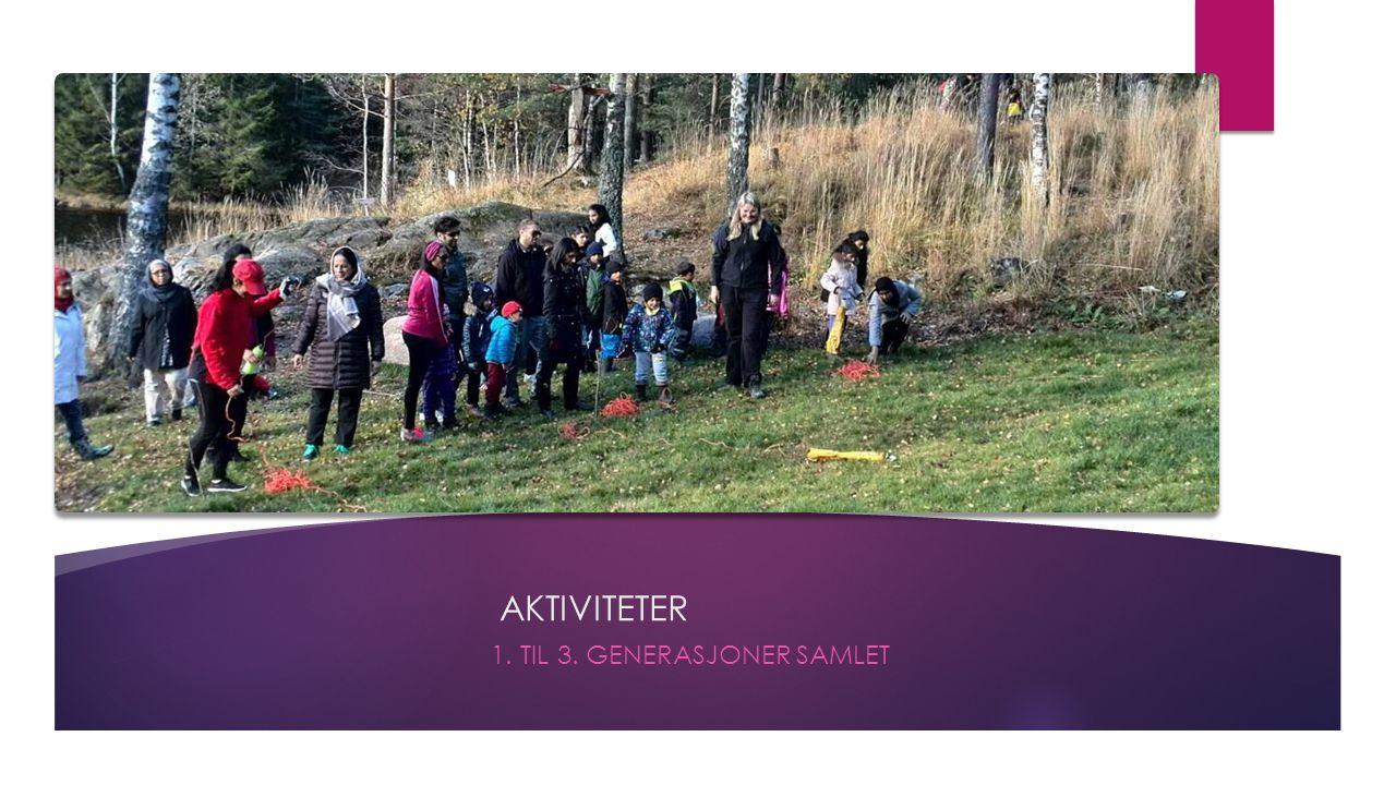 AKTIVITETER 1. TIL 3. GENERASJONER SAMLET