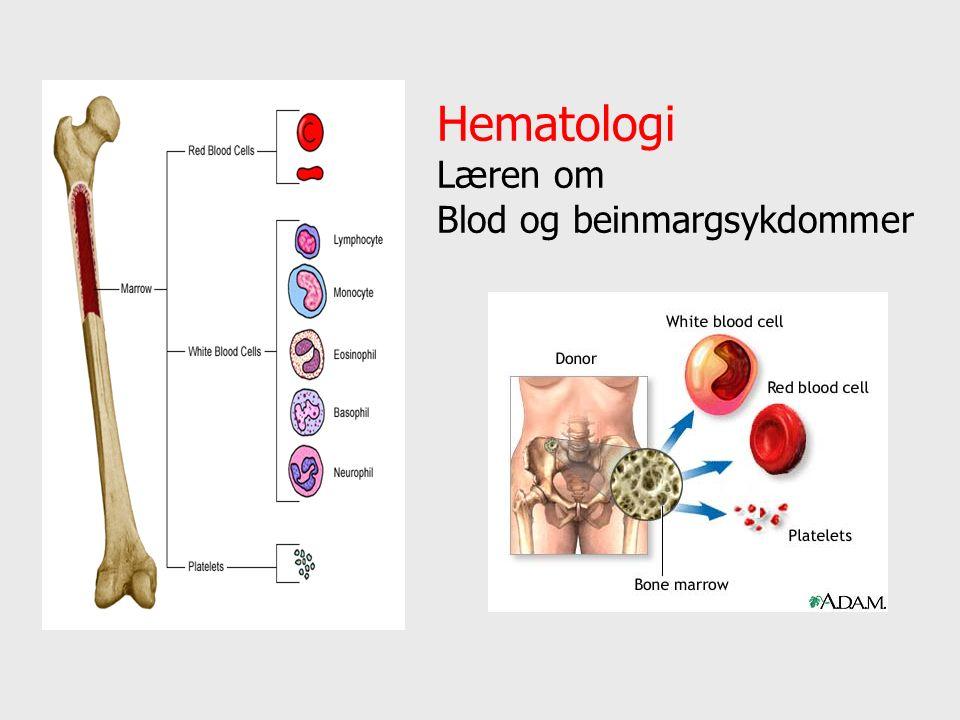 Hematologi Læren om Blod og beinmargsykdommer