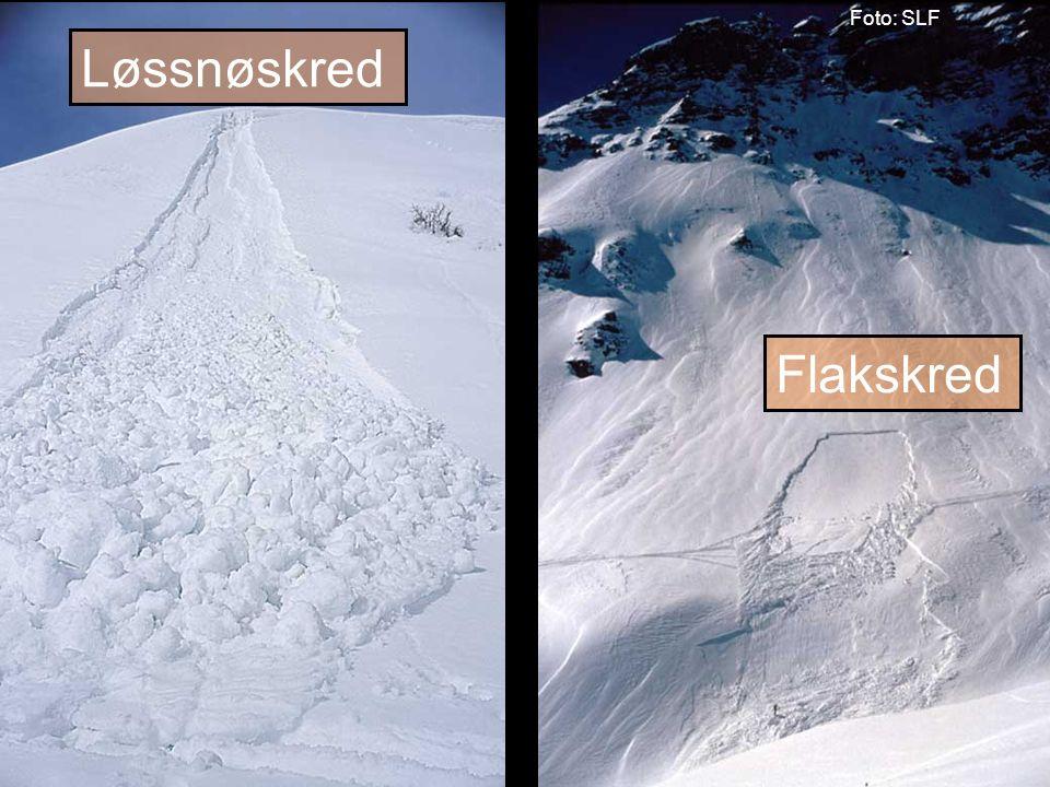 Norges vassdrags- og energidirektorat Vått løssnøskred Sørpeskred Foto:SLF Foto: Jon Eeg