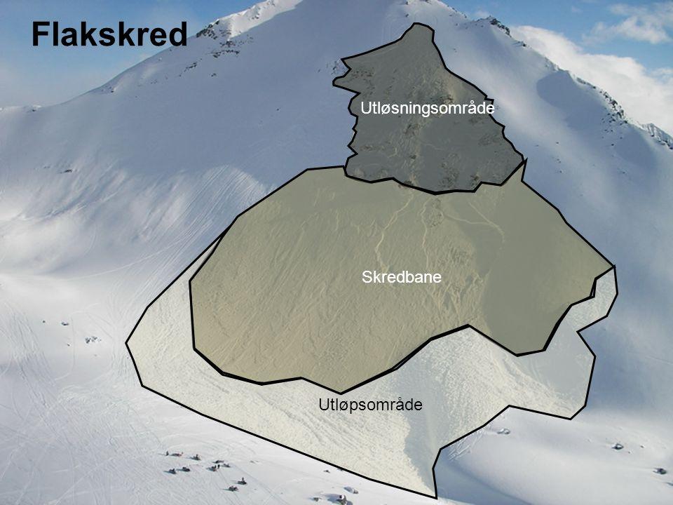 Norges vassdrags- og energidirektorat Løssnøskred I løs snø er forbindelsen (kohesjon) mellom krystallene liten, altså typisk i ny eller våt snø.