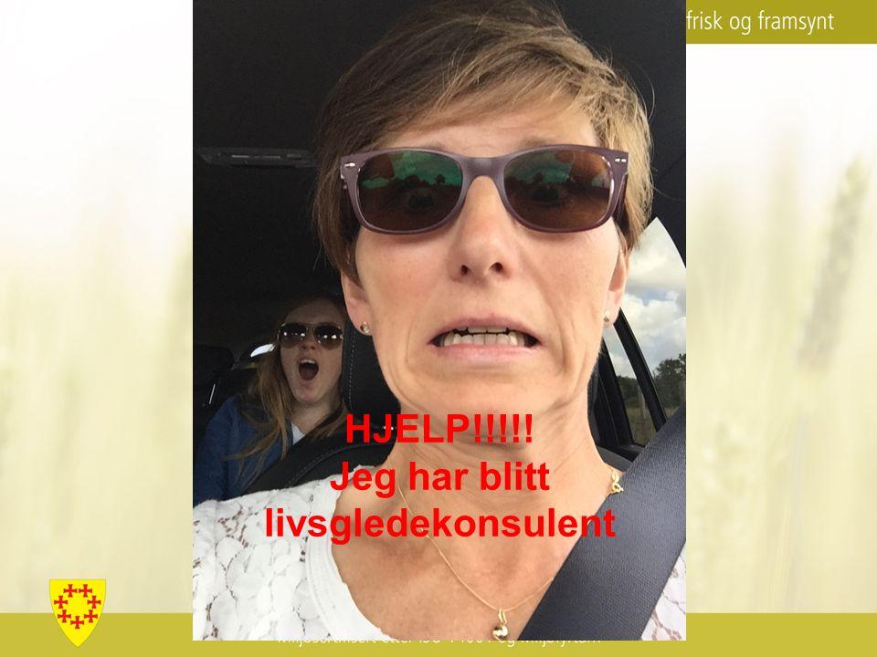 HJELP!!!!! Jeg har blitt livsgledekonsulent