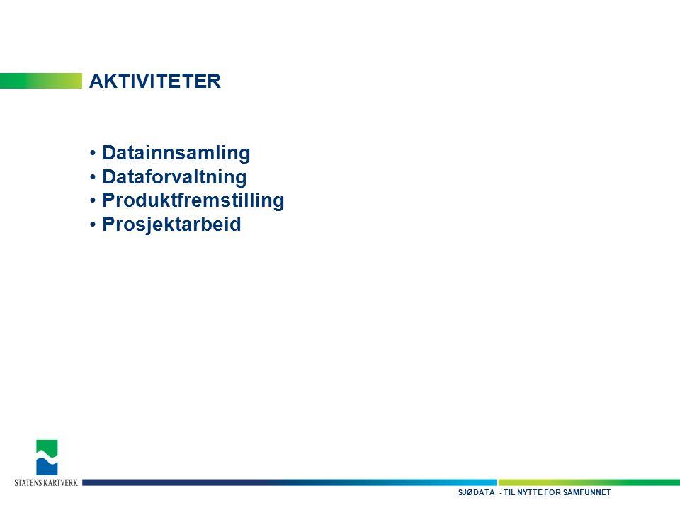 - TIL NYTTE FOR SAMFUNNETSJØDATA AKTIVITETER Datainnsamling Dataforvaltning Produktfremstilling Prosjektarbeid