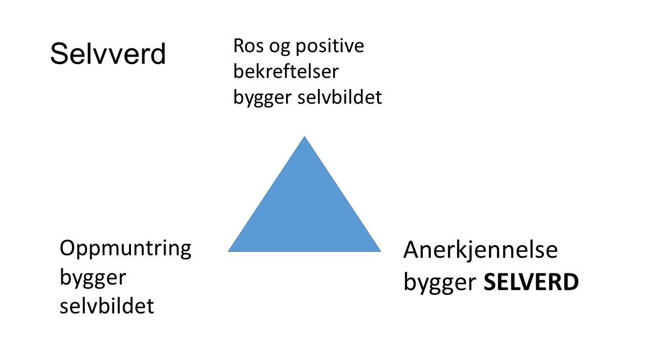 Robusthet gjennom Selvsikkerhet ref SMART, Neumer- Hoffmeister,Kommuneforlaget 2010 Defineres som en evne til :  Å hevde seg selv.