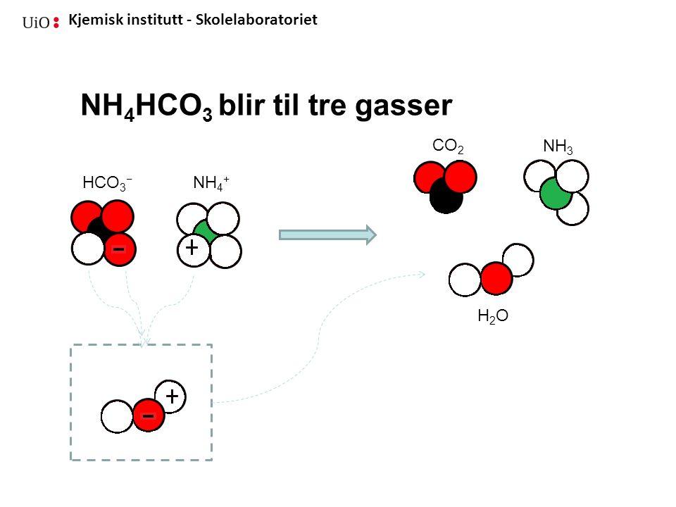 Kjemisk institutt - Skolelaboratoriet NH 4 HCO 3 blir til tre gasser NH 4 + HCO 3 − CO 2 NH 3 H2OH2O