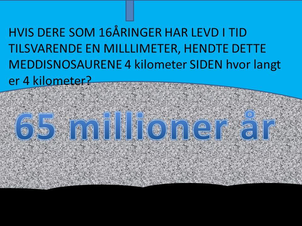 HVIS DERE SOM 16ÅRINGER HAR LEVD I TID TILSVARENDE EN MILLLIMETER, HENDTE DETTE MEDDISNOSAURENE 4 kilometer SIDEN hvor langt er 4 kilometer?