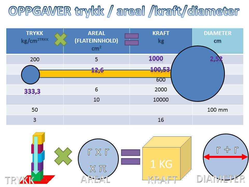 TRYKK kg/cm kg/cm 2TRKK AREAL (FLATEINNHOLD) cm cm 2 KRAFTkg DIAMETERcm 2005 84 6005 62000 1010000 50100 mm 316 1 1 KG