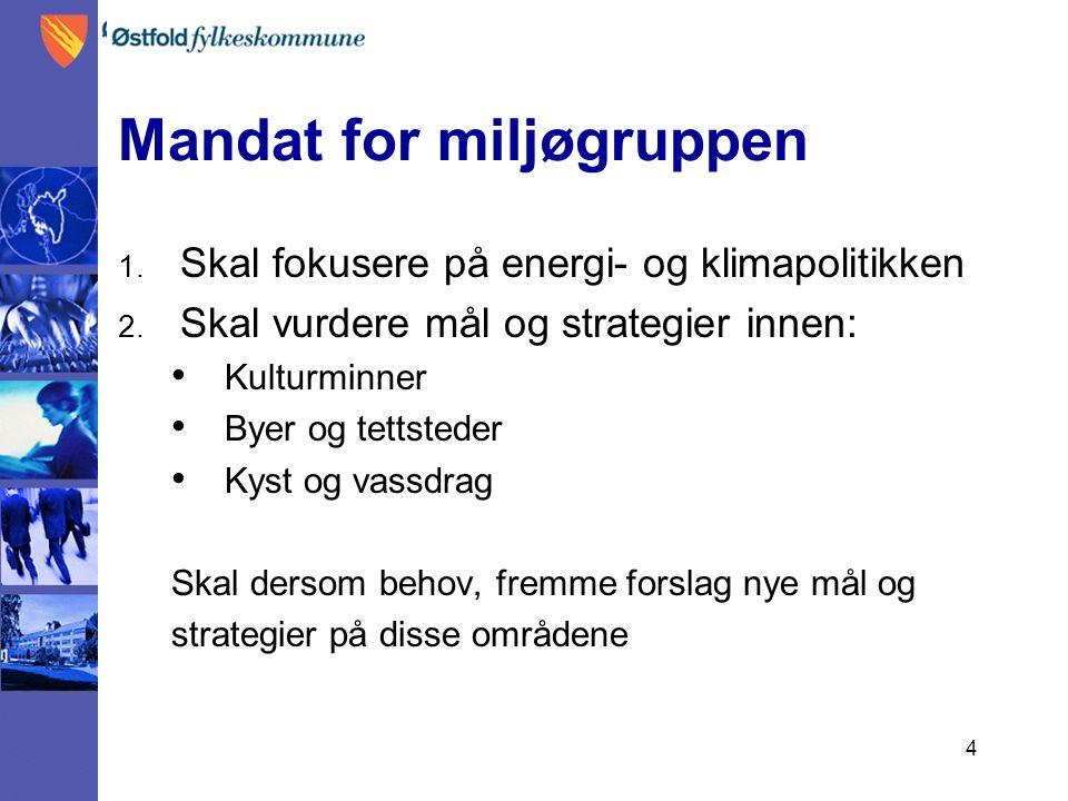 4 Mandat for miljøgruppen 1. Skal fokusere på energi- og klimapolitikken 2.