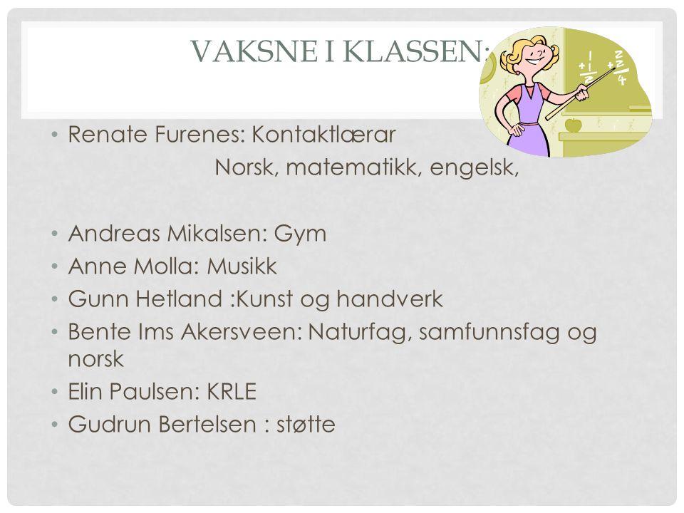 VAKSNE I KLASSEN: Renate Furenes: Kontaktlærar Norsk, matematikk, engelsk, Andreas Mikalsen: Gym Anne Molla: Musikk Gunn Hetland :Kunst og handverk Be