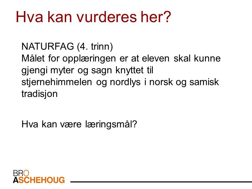NATURFAG (4.