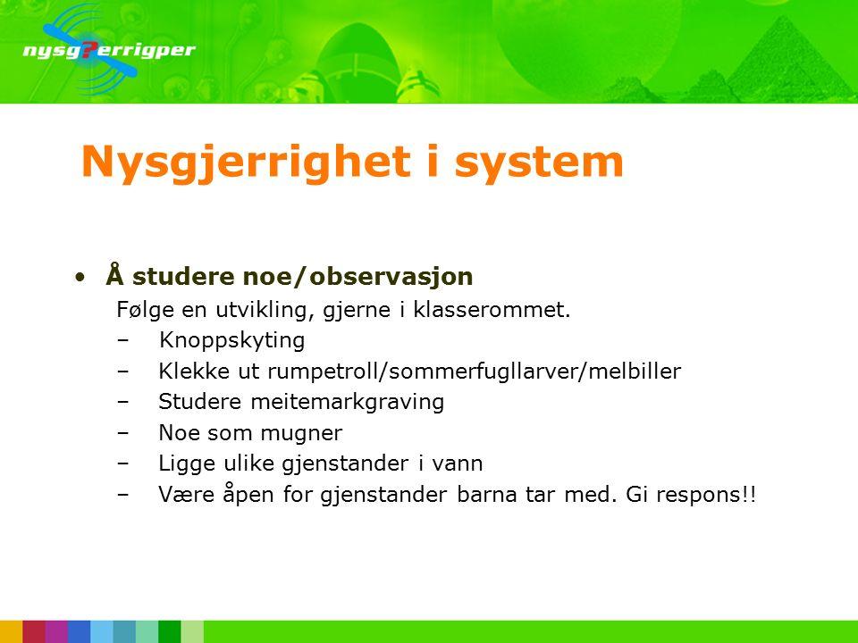 Nysgjerrighet i system Å studere noe/observasjon Følge en utvikling, gjerne i klasserommet.