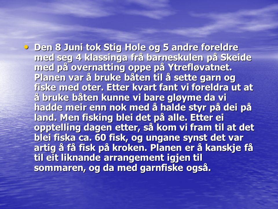 Den 8 Juni tok Stig Hole og 5 andre foreldre med seg 4 klassinga frå barneskulen på Skeide med på overnatting oppe på Ytrefløvatnet. Planen var å bruk