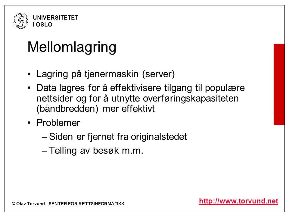 © Olav Torvund - SENTER FOR RETTSINFORMATIKK UNIVERSITETET I OSLO http://www.torvund.net Mellomlagring Lagring på tjenermaskin (server) Data lagres fo