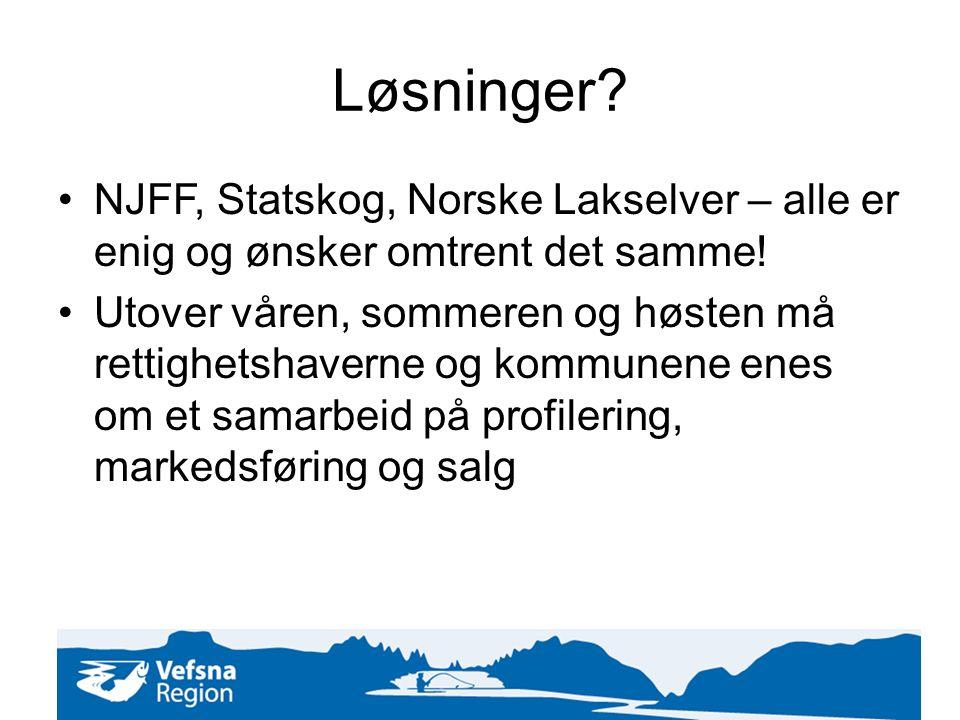 Løsninger. NJFF, Statskog, Norske Lakselver – alle er enig og ønsker omtrent det samme.