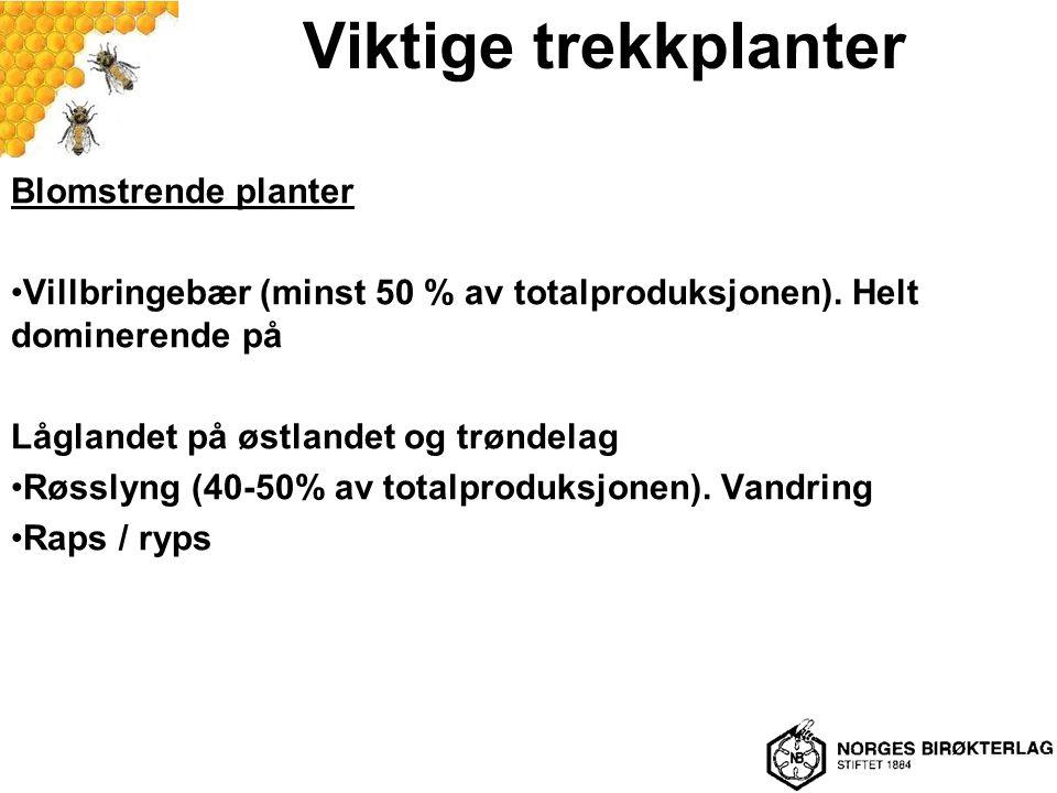 Viktige trekkplanter Blomstrende planter Villbringebær (minst 50 % av totalproduksjonen). Helt dominerende på Låglandet på østlandet og trøndelag Røss