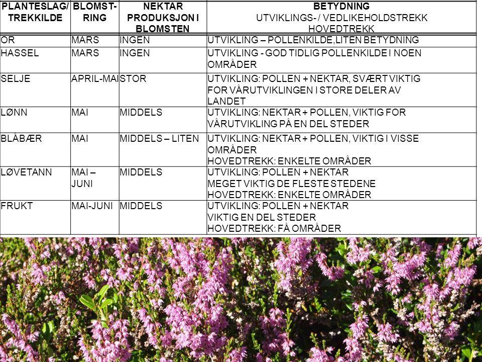 PLANTESLAG/ TREKKILDE BLOMST- RING NEKTAR PRODUKSJON I BLOMSTEN BETYDNING UTVIKLINGS- / VEDLIKEHOLDSTREKK HOVEDTREKK ORMARSINGENUTVIKLING – POLLENKILD