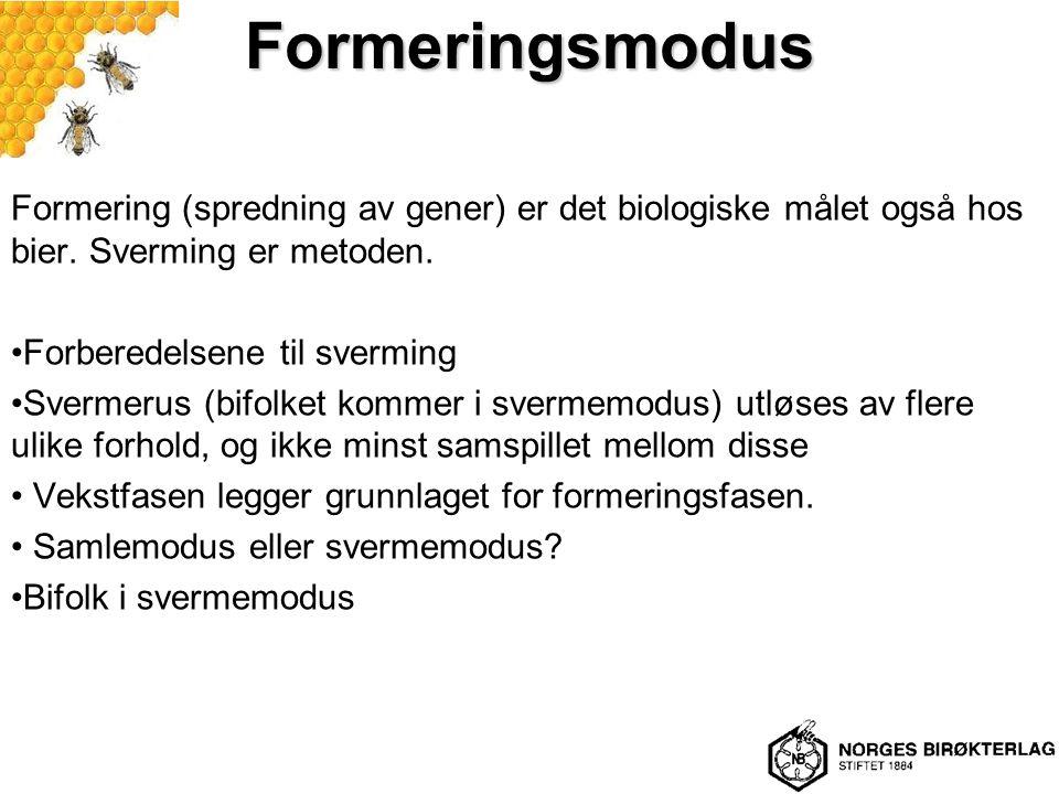 Formeringsmodus Formering (spredning av gener) er det biologiske målet også hos bier. Sverming er metoden. Forberedelsene til sverming Svermerus (bifo
