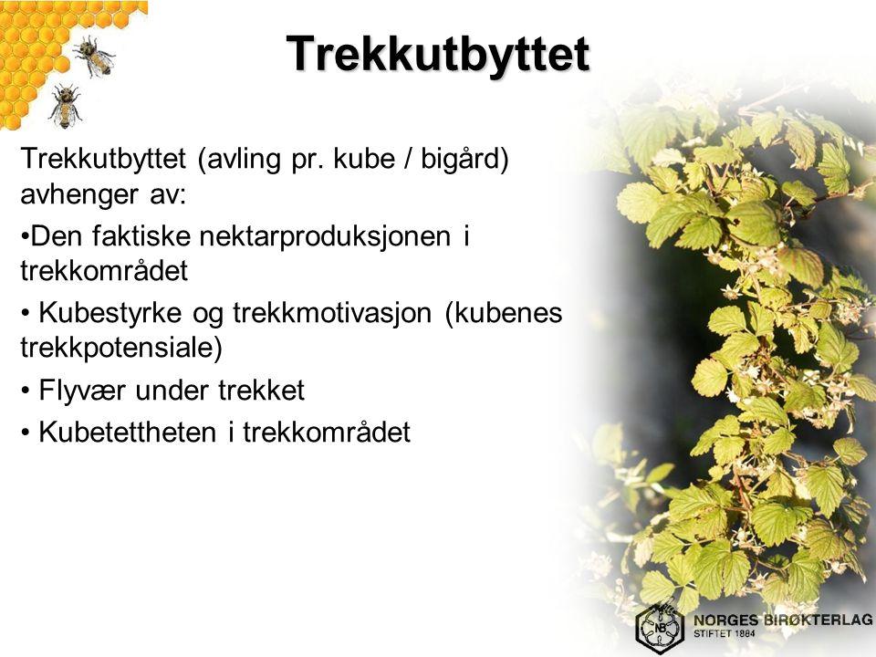Trekkutbyttet Trekkutbyttet (avling pr. kube / bigård) avhenger av: Den faktiske nektarproduksjonen i trekkområdet Kubestyrke og trekkmotivasjon (kube