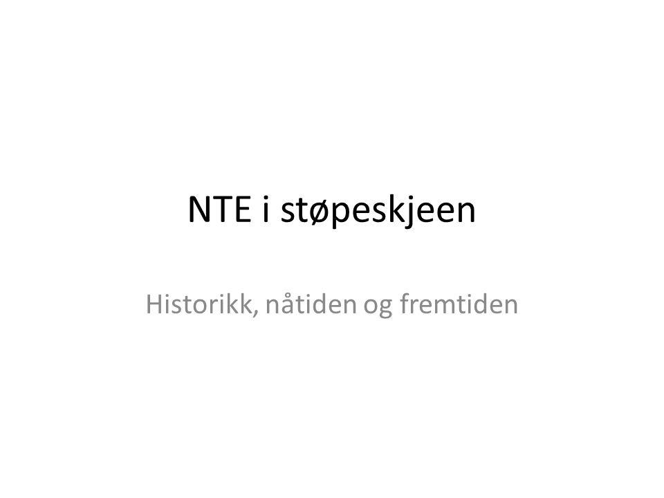 NTE i støpeskjeen Historikk, nåtiden og fremtiden