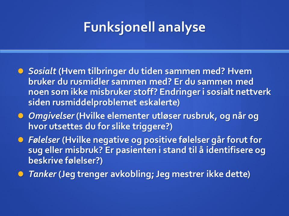 Funksjonell analyse Sosialt (Hvem tilbringer du tiden sammen med.