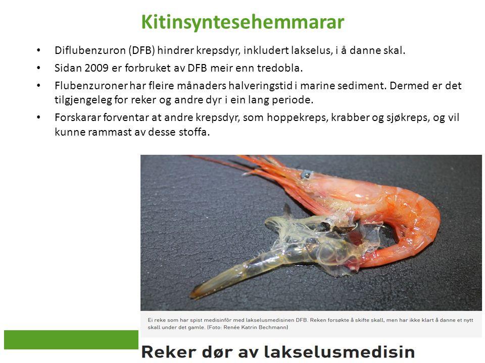 Kitinsyntesehemmarar Diflubenzuron (DFB) hindrer krepsdyr, inkludert lakselus, i å danne skal. Sidan 2009 er forbruket av DFB meir enn tredobla. Flube