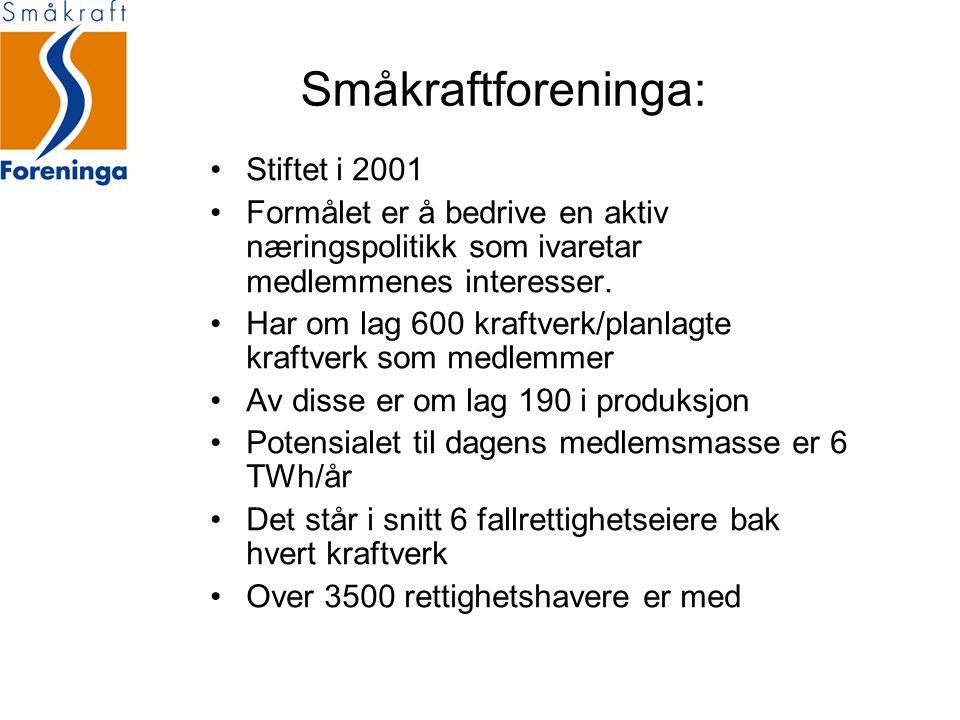 Norges største energiorganisasjon.