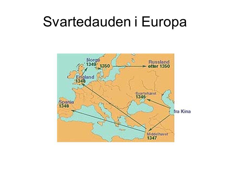 Svartedauden i Europa