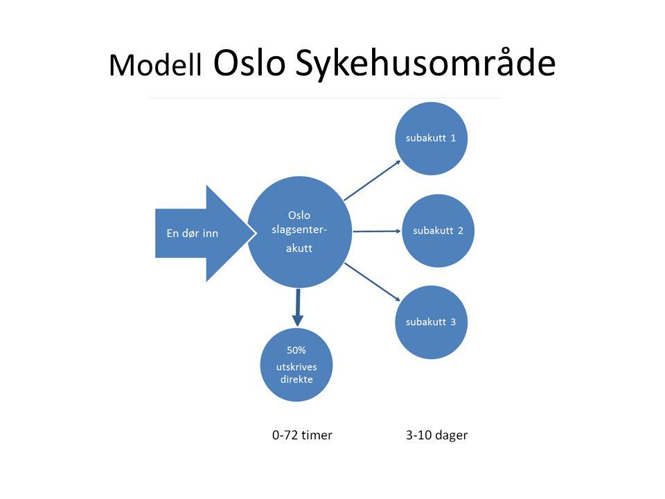 Modell Oslo Sykehusområde