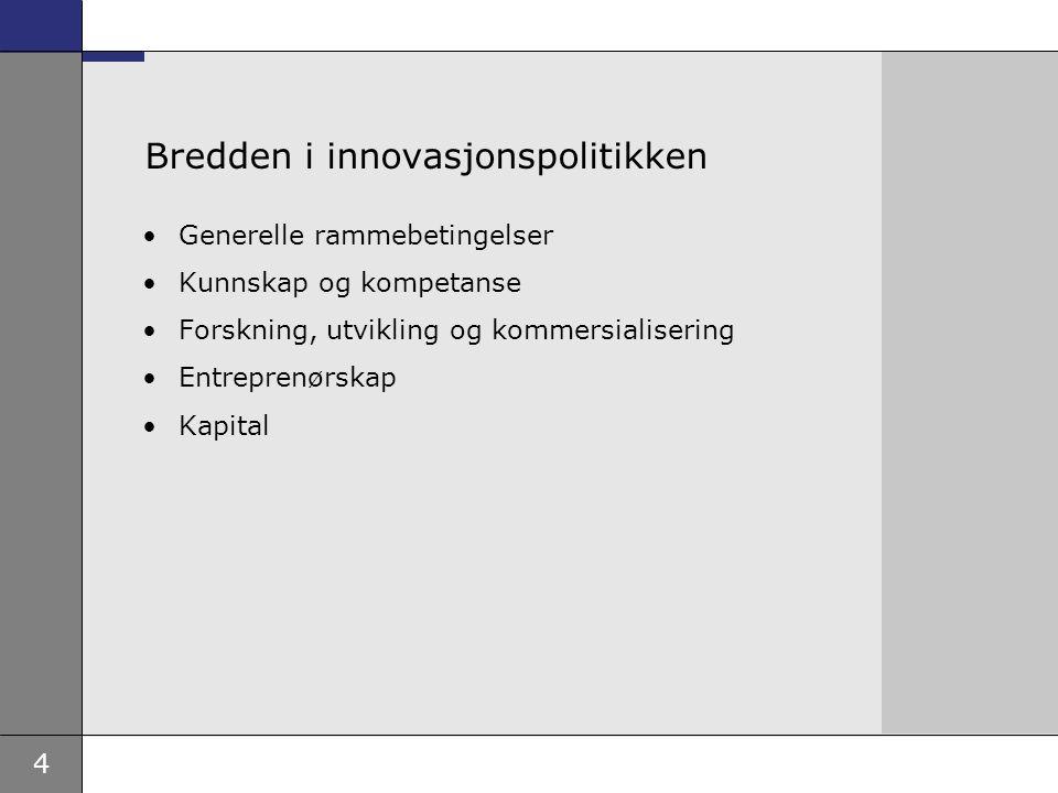 4 Bredden i innovasjonspolitikken Generelle rammebetingelser Kunnskap og kompetanse Forskning, utvikling og kommersialisering Entreprenørskap Kapital