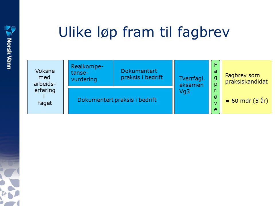 Voksnes vei fram til fagbrev – muligheter for alternative løp MålgruppeVg1 skoleVg2 skoleVg3 skole/bedrift Praksistid Fag- prøve Slutt- kompetans e 1.