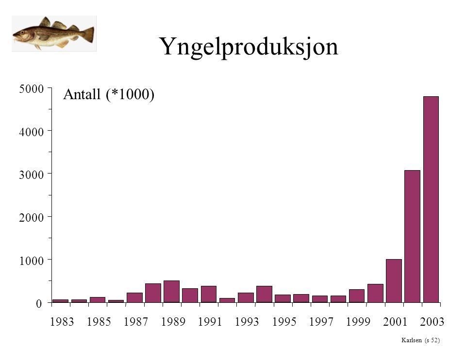 Yngelproduksjon 0 1000 2000 3000 4000 5000 19831985198719891991199319951997199920012003 Antall (*1000) Karlsen (s 52)