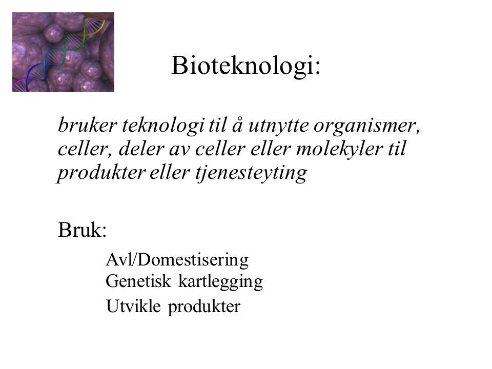 Bioteknologi: bruker teknologi til å utnytte organismer, celler, deler av celler eller molekyler til produkter eller tjenesteyting Bruk: Avl/Domestisering Genetisk kartlegging Utvikle produkter