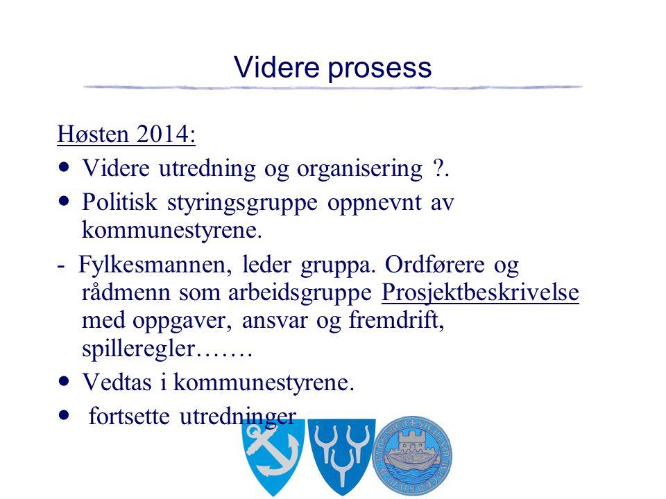 Videre prosess Høsten 2014: Videre utredning og organisering .