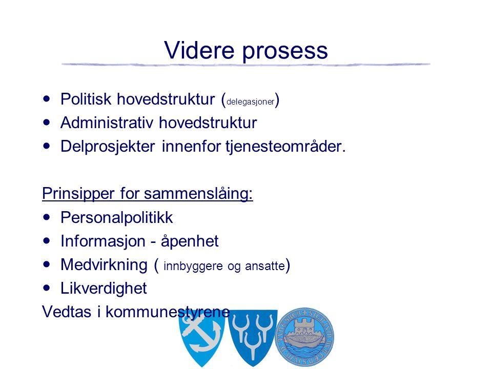 Videre prosess Politisk hovedstruktur ( delegasjoner ) Administrativ hovedstruktur Delprosjekter innenfor tjenesteområder.