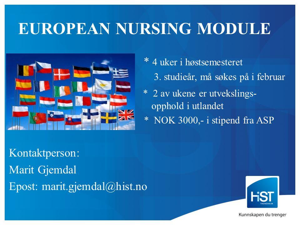 EUROPEAN NURSING MODULE * 4 uker i høstsemesteret 3.