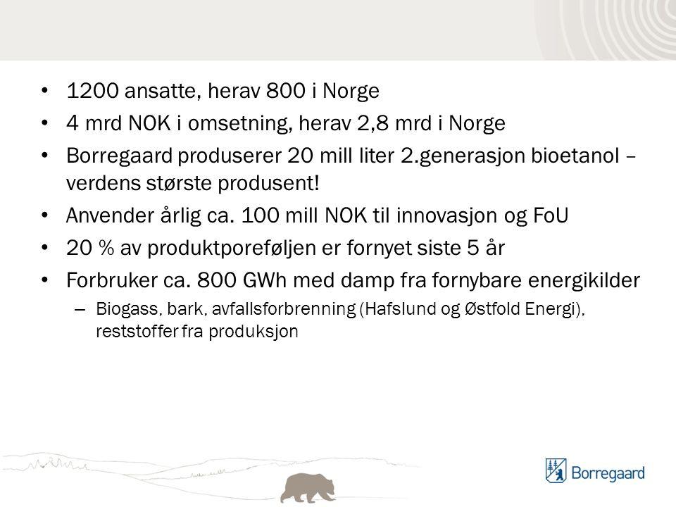 1200 ansatte, herav 800 i Norge 4 mrd NOK i omsetning, herav 2,8 mrd i Norge Borregaard produserer 20 mill liter 2.generasjon bioetanol – verdens største produsent.