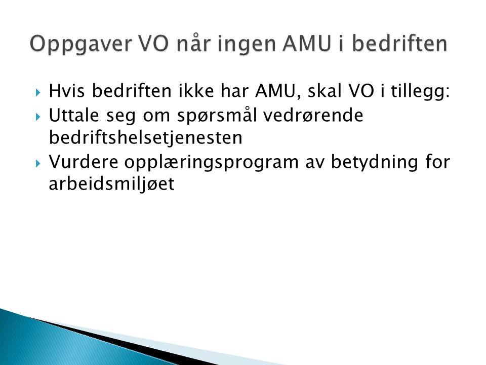  Hvis bedriften ikke har AMU, skal VO i tillegg:  Uttale seg om spørsmål vedrørende bedriftshelsetjenesten  Vurdere opplæringsprogram av betydning