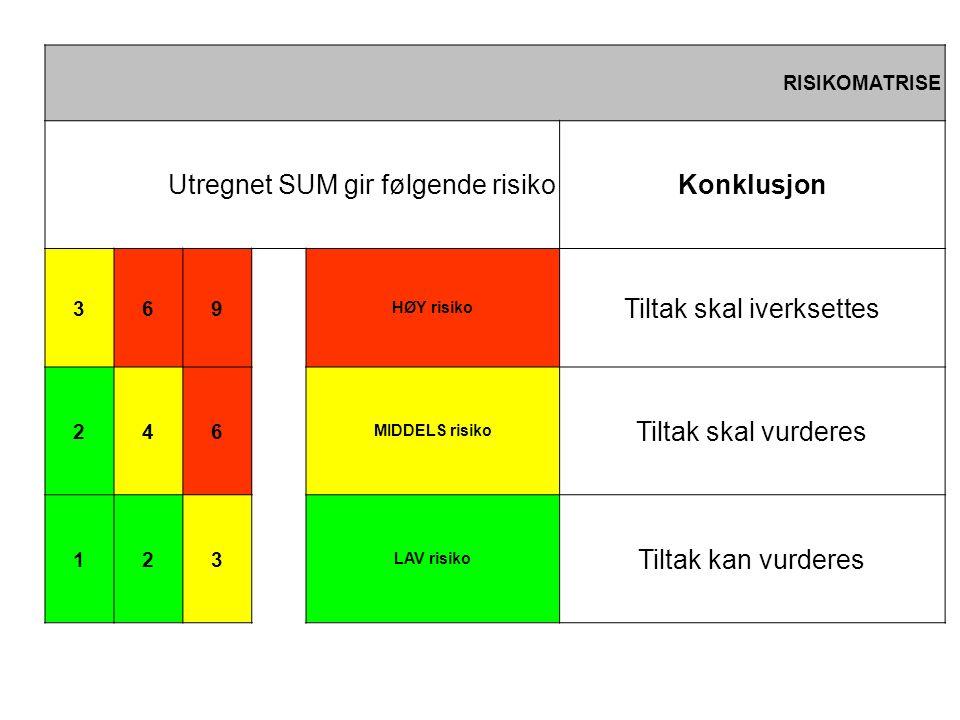 RISIKOMATRISE Utregnet SUM gir følgende risikoKonklusjon 369 HØY risiko Tiltak skal iverksettes 246 MIDDELS risiko Tiltak skal vurderes 123 LAV risiko Tiltak kan vurderes