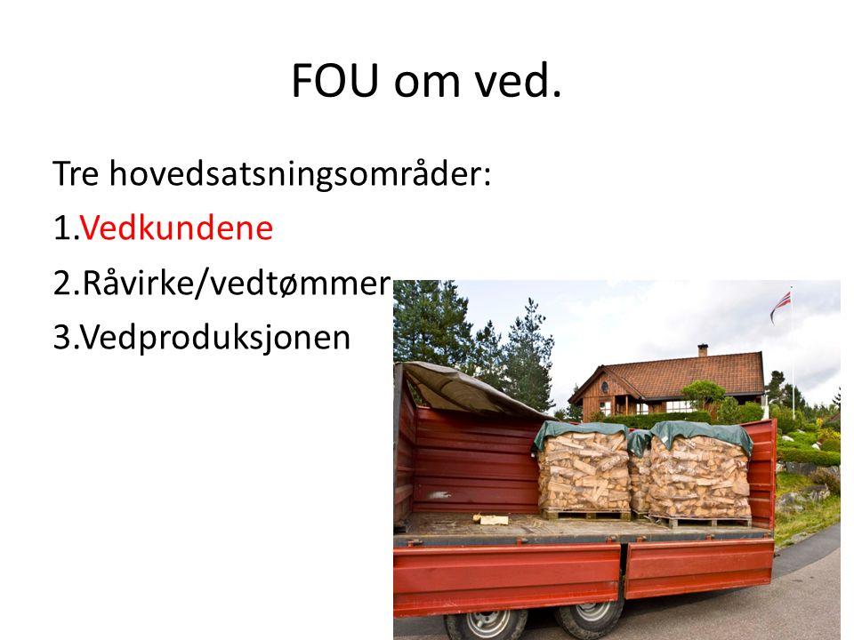 Hovedutfordring: Flere forskningsmiljøer må engasjeres i FOU innen ved/annen bioenergi.