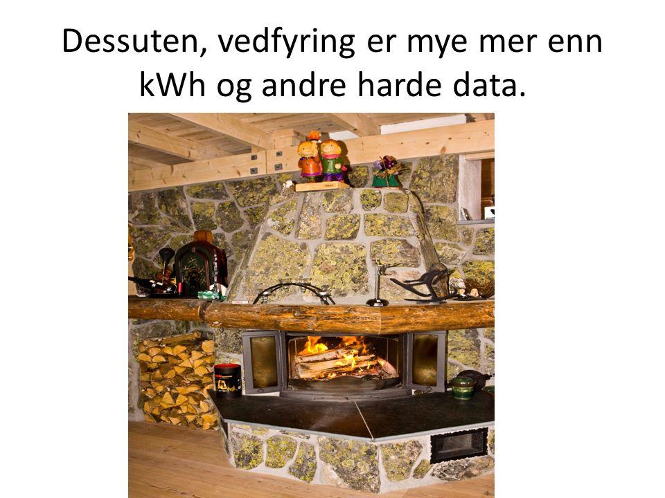 Dessuten, vedfyring er mye mer enn kWh og andre harde data.