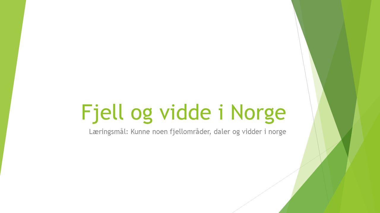 Fjell og vidde i Norge Læringsmål: Kunne noen fjellområder, daler og vidder i norge