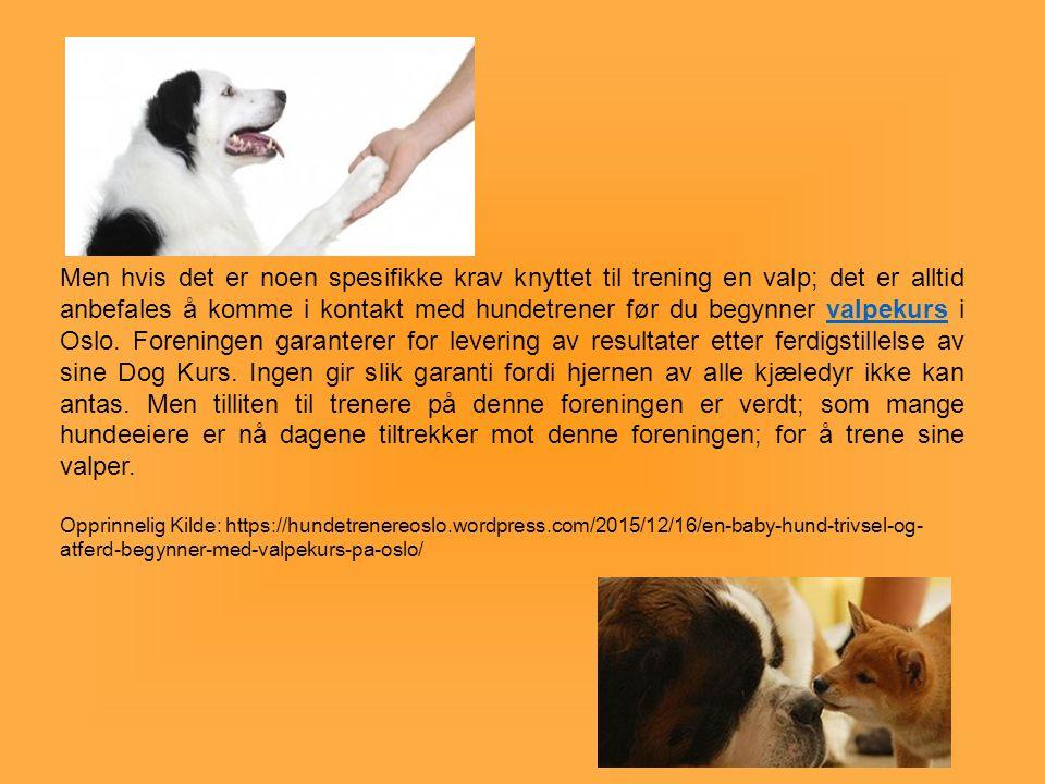 Men hvis det er noen spesifikke krav knyttet til trening en valp; det er alltid anbefales å komme i kontakt med hundetrener før du begynner valpekurs i Oslo.