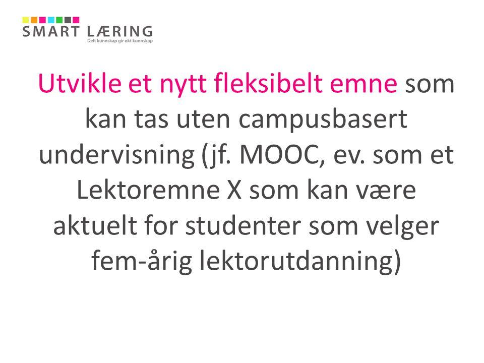 Utvikle et nytt fleksibelt emne som kan tas uten campusbasert undervisning (jf. MOOC, ev. som et Lektoremne X som kan være aktuelt for studenter som v
