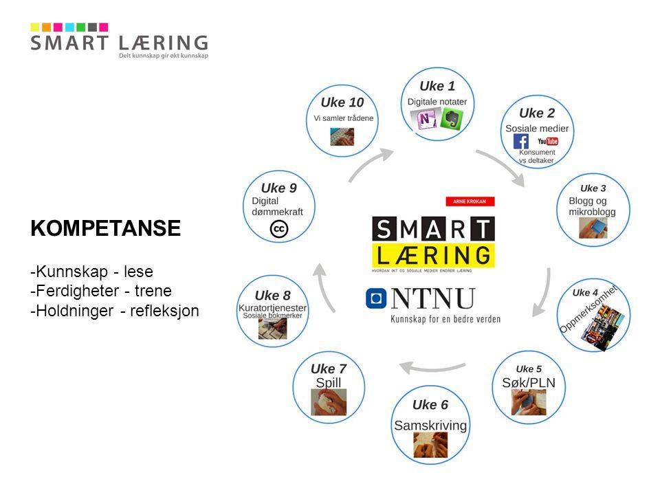 Synliggjøre aktiviteter og kompetanse gjennom etablering av et nytt Senter for smart læring