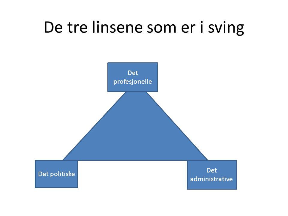 De tre linsene som er i sving Det profesjonelle Det politiske Det administrative