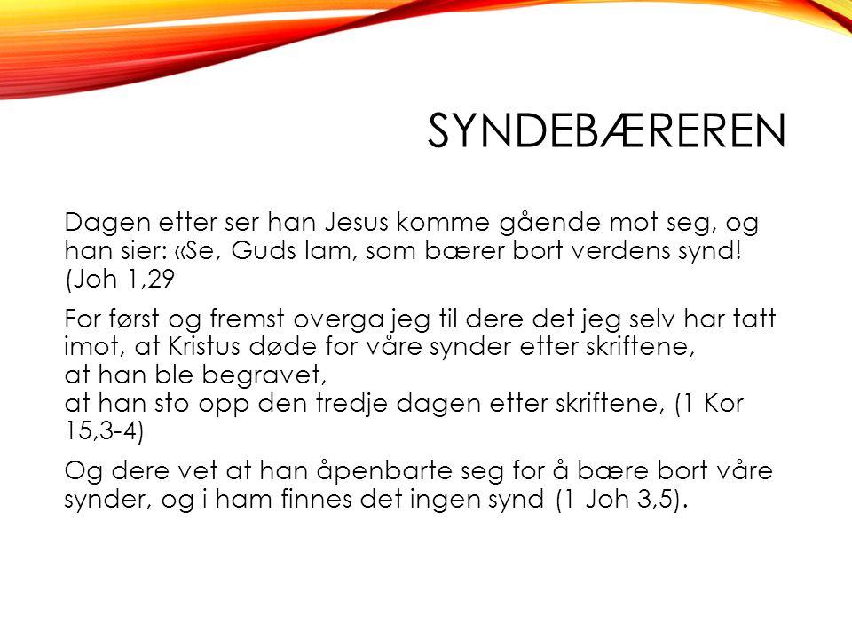 SYNDEBÆREREN Dagen etter ser han Jesus komme gående mot seg, og han sier: «Se, Guds lam, som bærer bort verdens synd.