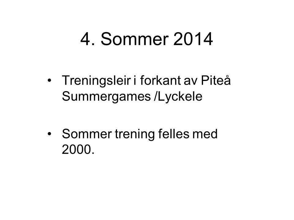 Gutter 2001 IK Grand Bodø 2014 Struktur / plan Roller i laget Spillemønster Terminologi – fotballspråk