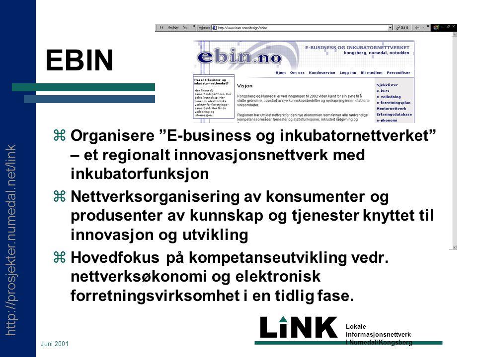 http://prosjekter.numedal.net/link LINK Lokale informasjonsnettverk i Numedal/Kongsberg Juni 2001 EBIN  Organisere E-business og inkubatornettverket – et regionalt innovasjonsnettverk med inkubatorfunksjon  Nettverksorganisering av konsumenter og produsenter av kunnskap og tjenester knyttet til innovasjon og utvikling  Hovedfokus på kompetanseutvikling vedr.