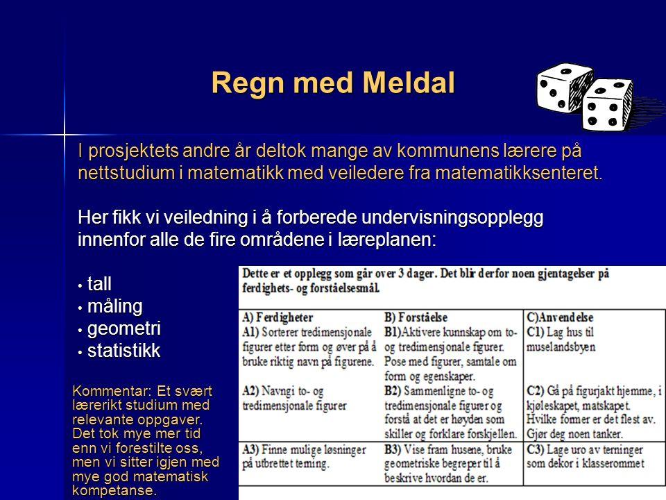 Regn med Meldal I prosjektets andre år deltok mange av kommunens lærere på nettstudium i matematikk med veiledere fra matematikksenteret.
